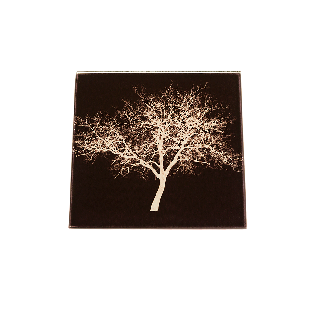 Midsummer-Common-Tree-Glass-Coaster-new