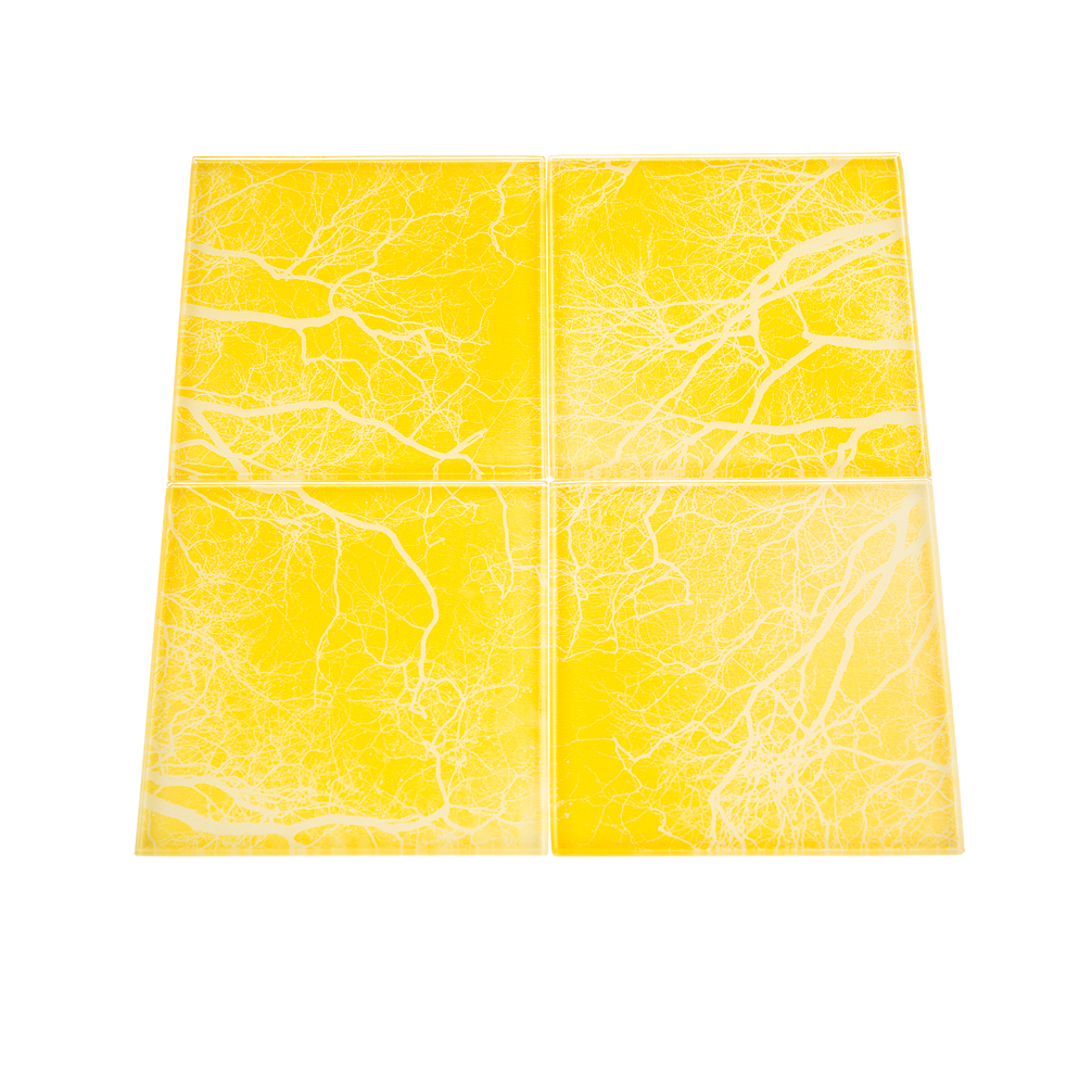 jesus-green-branches-yellow-coaster-set-new