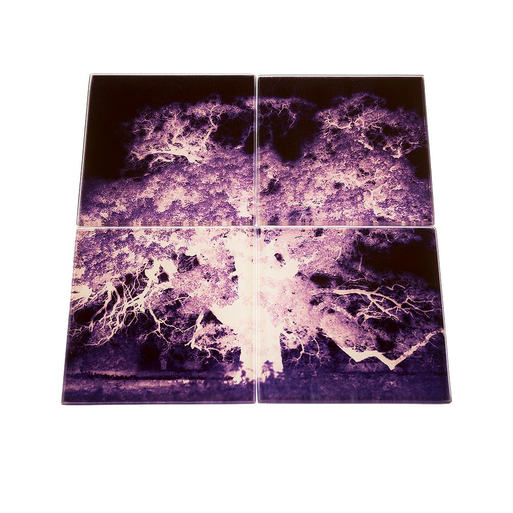 enchanted-oak-purple-coaster-set-new